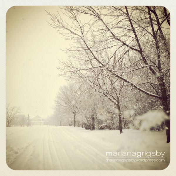 020813_snowMG
