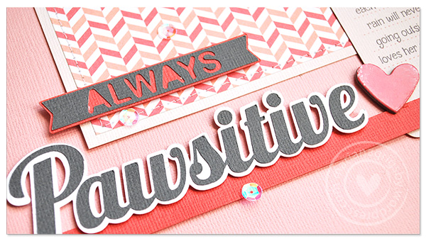 012314web_alwayspawsitive31