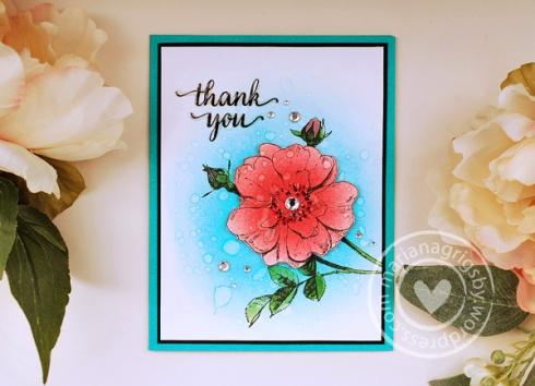052316web_thanks