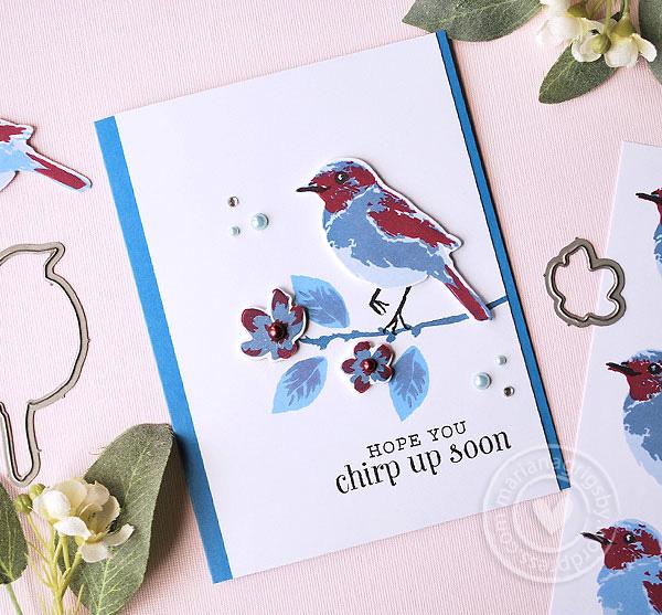 042616_bird