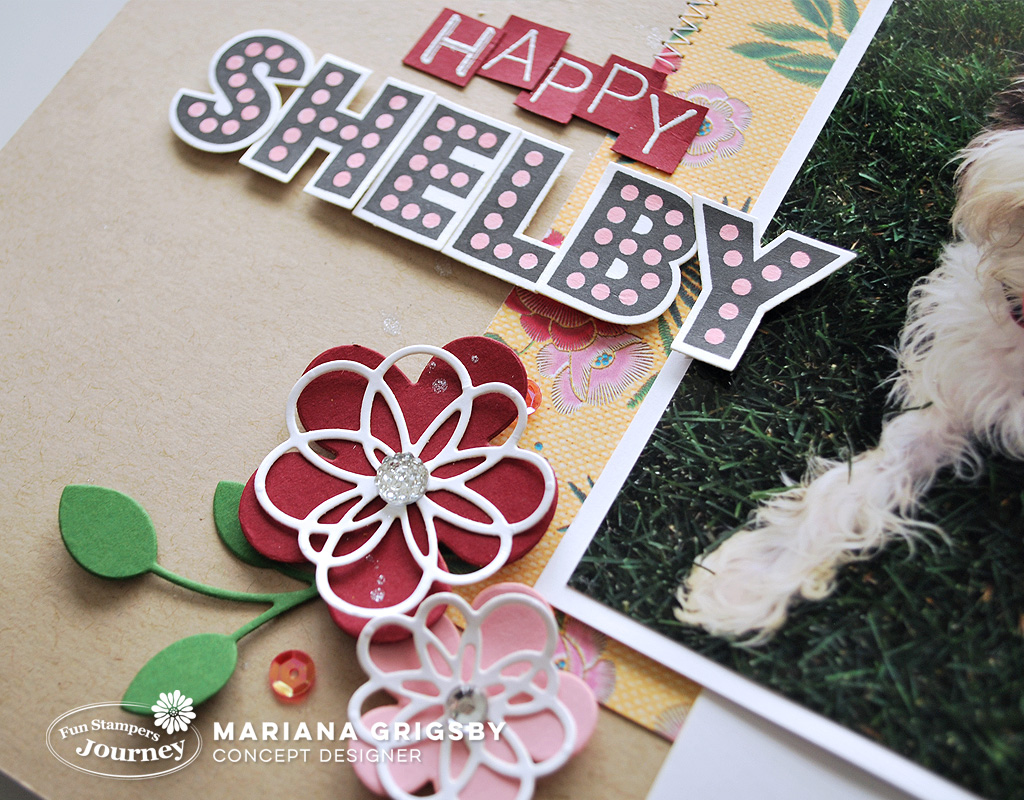 110517web)HappyShelby4